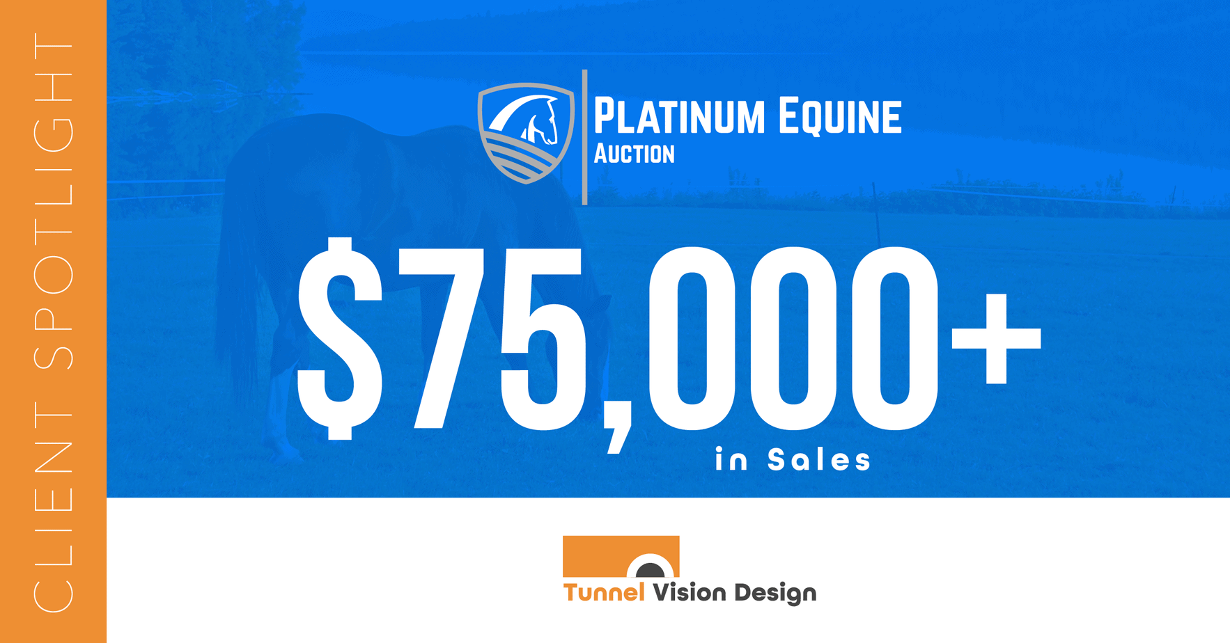 Platinum Equine Auction
